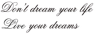 Don't dream your life, live your dreams XL seinätarra